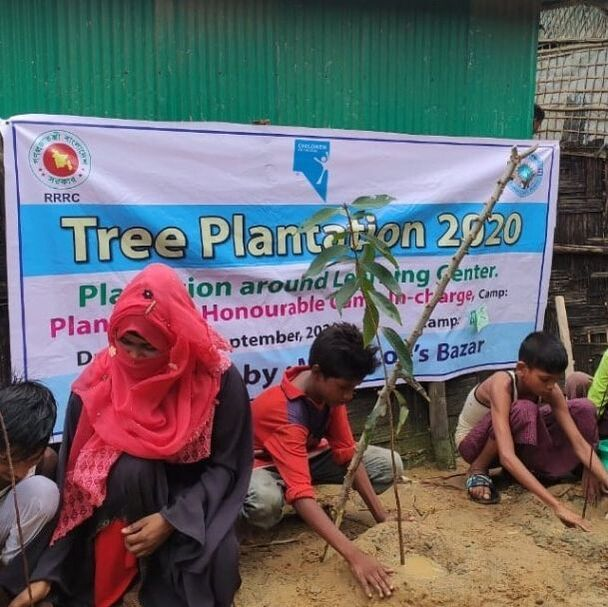 Children and teachers planting trees on plantation day